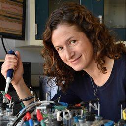 Dr Sarah Glaven